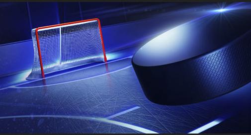 Jak kdo vstoupí do MS vledním hokeji?