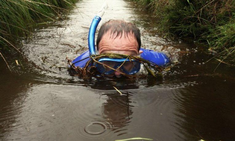 Potápění v bažině