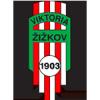 Logo týmu Žižkov Viktoria