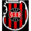 Logo týmu Brasil Pelotas
