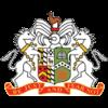 Logo týmu Glenavon Lurgan