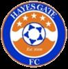 Logo týmu Hayes
