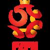 Ikona týmu Polsko