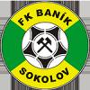 Ikona týmu Sokolov Baník