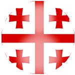 Logo týmu Gruzie 21