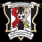 Logo týmu Newi Cefn Druids
