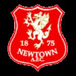 Logo týmu Newtown AFC