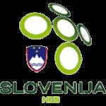 Logo týmu Slovinsko
