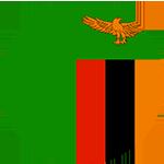 Logo týmu Zambie