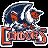 Logo týmu Bakersfield Condors