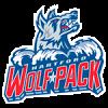 Logo týmu Hartford Wolf Pack