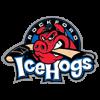 Logo týmu Rockford IceHogs