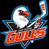Logo týmu San Diego Gulls