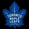 Logo týmu Toronto