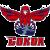 Logo týmu Sokol Krasnoyarsk