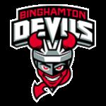 Logo týmu Binghamton Devils