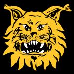 Logo týmu Ilves Tampere
