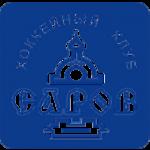 Logo týmu Sarov